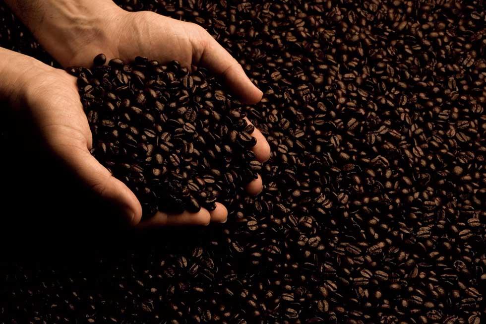 DEAN & DELUCAのコーヒー
